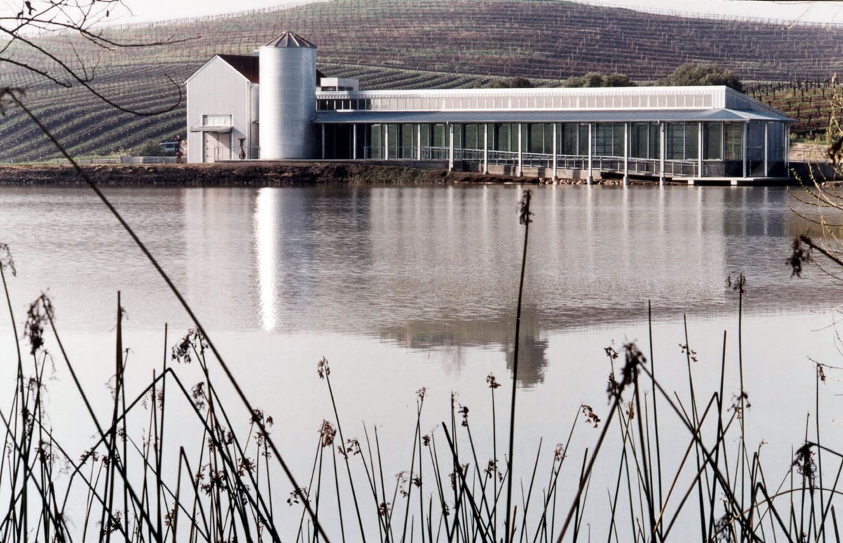 Art Museum, Carneros Napa County |  39 of 104